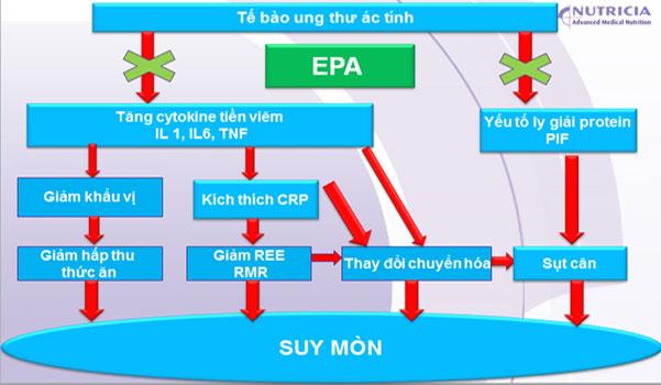 EPA cho người ung thư